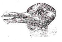 200px-Duck-Rabbit_illusion