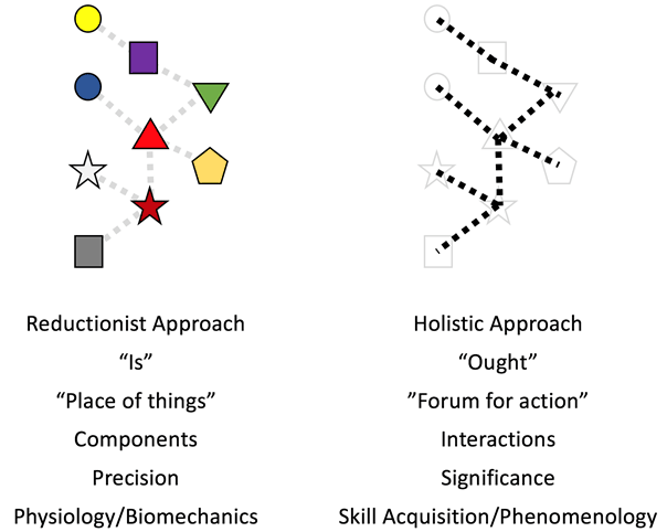 figure-8-complementary-aspects-of-reductionist-approach-vs-holistic-system-approach
