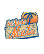 st lucie mets - logo