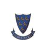 sussex cricket - logo