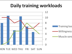 Usage of Subjective Indicators in Monitoring and Programming of Training