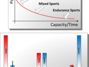 Problems of the Periodization of Training in Mixed Sports (Part 1)