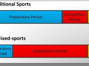 Problems of the Periodization of Training in Mixed Sports – Part 2