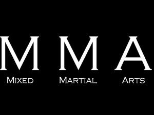 MMA Training Classification Using Bondarchuk System