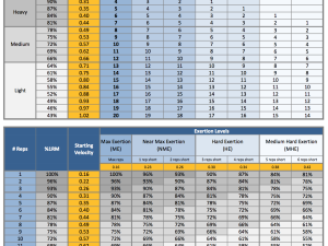 How to Create Individualized Exercise Profile in Strength Training? Part 4: Velocity/Exertion Profile