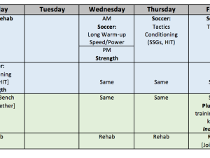 Planning the in-season Microcycle in Soccer Part 6: In-season Strength Training for Soccer