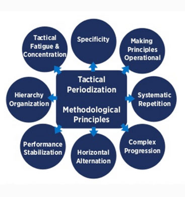 tactical-periodization-screen-shot