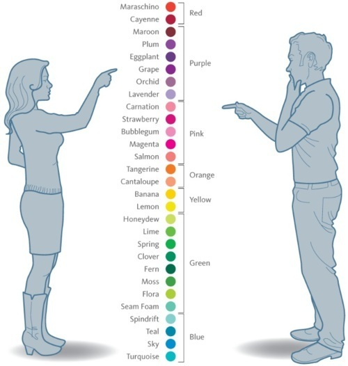 Male-vs-Female-colors-random-20558616-500-526