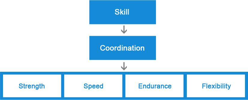 skill-coordination-abilities