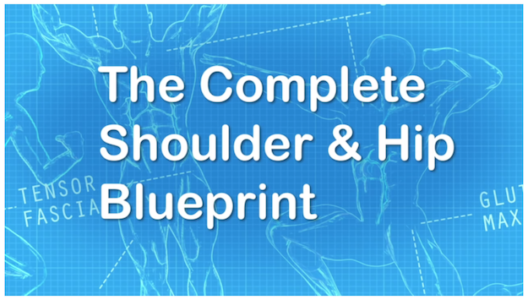 Shoulder and Hip Blueprint