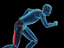 Hamstring Injury Treatment