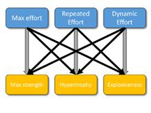 Strength Training Categorization – Part 1