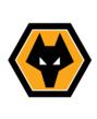 Wolverhampton Wanderers - logo