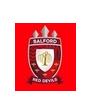salford - logo