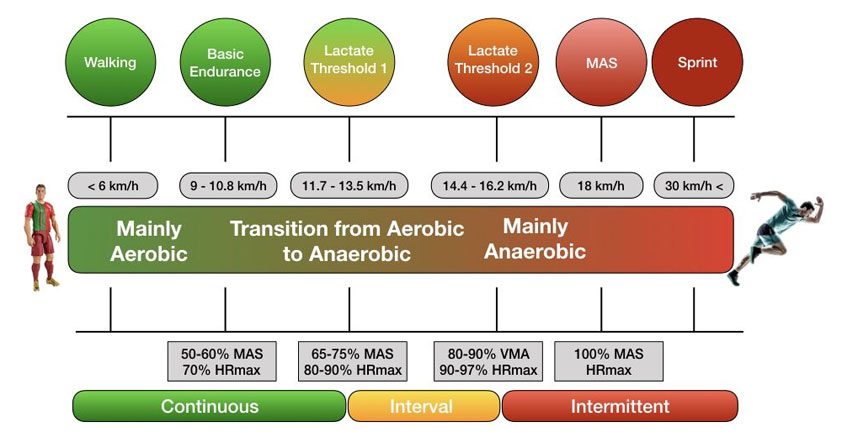 physiological-threshold-specific-training-according-to-intensity-and-mode-of-exercise