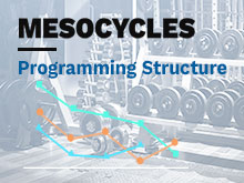 Mesocycles Course – Lesson 1: Programming Structure