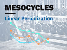 Mesocycles Course – Lesson 2: Linear Periodization