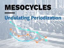 Mesocycles Course – Lesson 3: Undulating Periodization